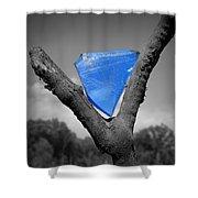 Blue Glass Art Shower Curtain