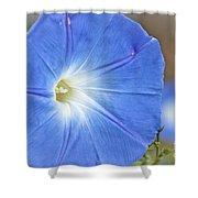 Blue Glories Shower Curtain