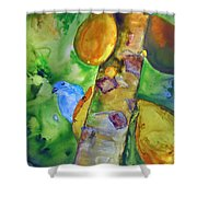 Blue Gray Tanager Shower Curtain
