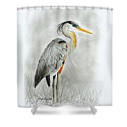Blue Heron 3 Shower Curtain by Phyllis Howard