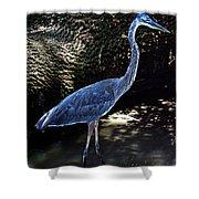 Blue Heron 8 Shower Curtain