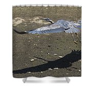 Blue Heron And Shadow Shower Curtain