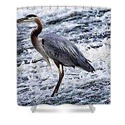 Blue Heron Fishing V3 Shower Curtain