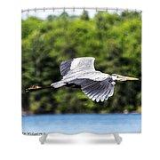 Blue Heron In Flight II Shower Curtain