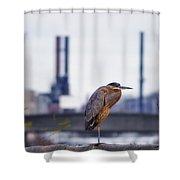 Blue Heron In Manayunk Shower Curtain