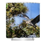 Blue Heron In The Trees Oil Shower Curtain