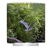 Blue Heron Journey I Shower Curtain