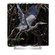 Blue Heron Lift Off Shower Curtain