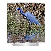 Blue Heron Louisiana Shower Curtain