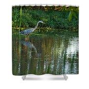 Blue Heron Magic Shower Curtain