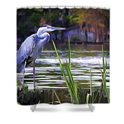 Blue Heron On The Bay Shower Curtain