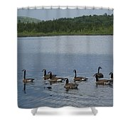 Blue Hills Geese Shower Curtain