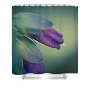 Blue Honeywort Shower Curtain