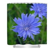 Blue Hue Hue Shower Curtain