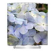 Blue Hydrangea Flowers Shower Curtain