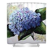 Blue Hydrangea Shower Curtain