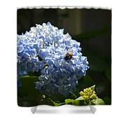 Blue Hydrangea With Bumblebee Shower Curtain