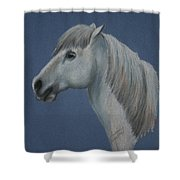 Blue Ice Pony Shower Curtain