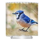 Blue Jay - Digtial Paint Shower Curtain