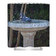 Blue Jay Loves To Splash Water Shower Curtain