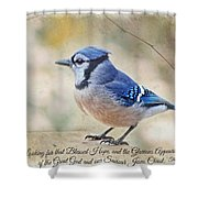 Blue Jay With Verse Shower Curtain