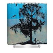 Blue Kite Sunset Shower Curtain