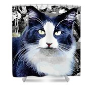 Blue Kitty Two Shower Curtain