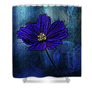 Blue Lady Shower Curtain