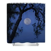Blue Moon Horse And Oak Tree Shower Curtain