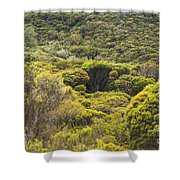 Blue Mountains Greens Shower Curtain