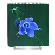 Blue On Green Shower Curtain
