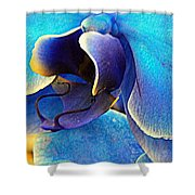Blue Orchid Macro Shower Curtain