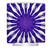 Blue Orchid Sunburst Kaleidoscope Shower Curtain