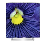 Blue Pansy Shower Curtain
