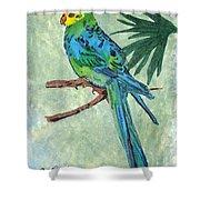 Blue Parakeet Shower Curtain