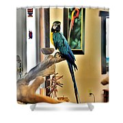 On The Perch Shower Curtain