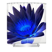 Blue Passion Shower Curtain