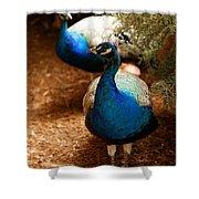 Blue Peacocks Shower Curtain
