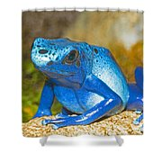 Blue Poison Dart Frog Shower Curtain