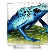 Blue Poison Dart Frog Shower Curtain