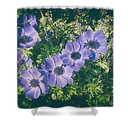 Blue Poppies Blooms Shower Curtain