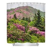 Blue Ridge Mountain Rhododendron - Roan Mountain Bloom Extravaganza Shower Curtain