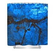 Blue Rock Shower Curtain