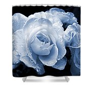 Blue Roses With Raindrops Shower Curtain