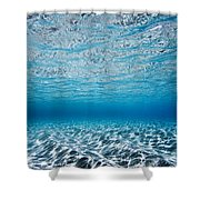 Blue Sea Shower Curtain by Sean Davey