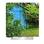 Blue Shed II Shower Curtain