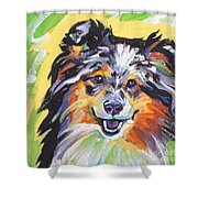 Blue Sheltie Shower Curtain