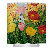 Blue Skies And Sunshine Shower Curtain