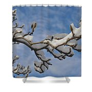 Blue Skies In Winter Shower Curtain