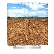 Blue Sky And Field 14567 Shower Curtain
